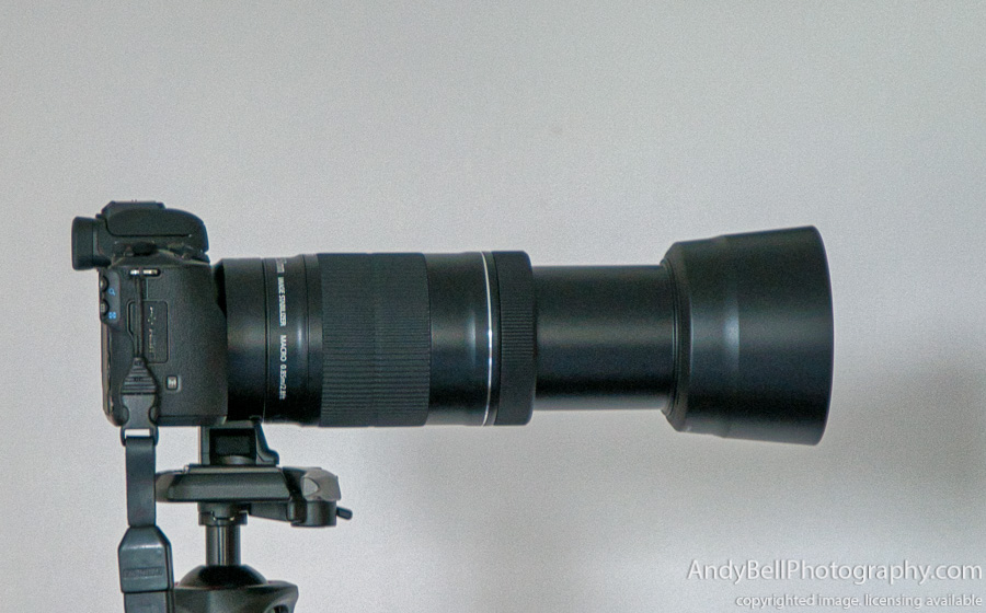 EOS M Adapter with M50 and EF-S 55-250