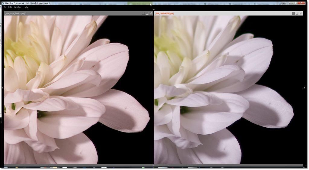 Topaz Gigapixel AI Vs Canon EF x2 Extender