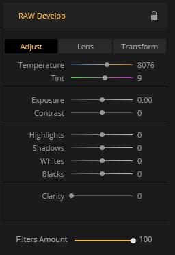 Luminar Raw Adjustments