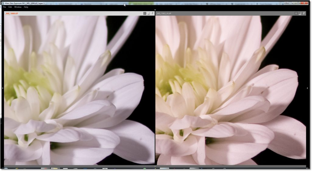 Extender (left) vs Gigapixel AI (right)