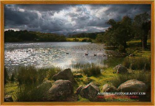 Beechwood frame